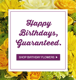 Happy Birthdays Guaranteed Shop Birthday Flowers